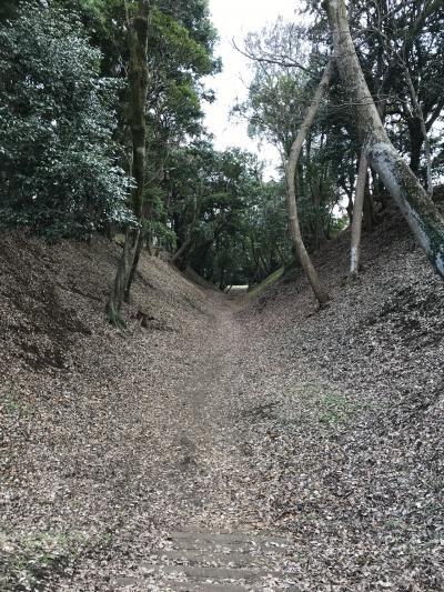 神奈川県の城跡巡り:小田原城跡、総構えは必見