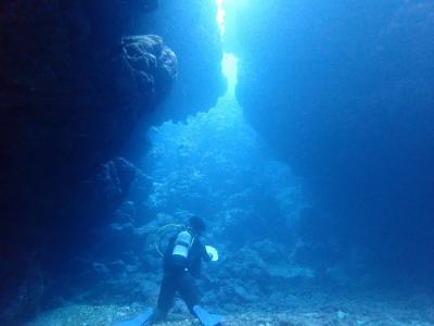 石垣島2019春(6) 石垣島ダイビング・崎枝ビッグアーチで地形ダイビングと蘇った珊瑚たち