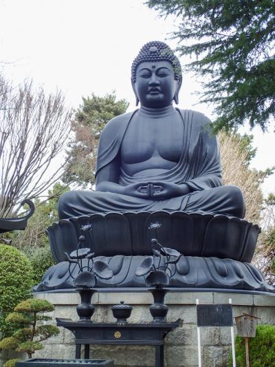 東京にも大仏があります!@東京大仏と赤塚植物園