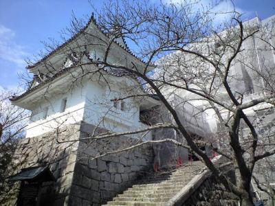 伊賀上野城と忍者屋敷