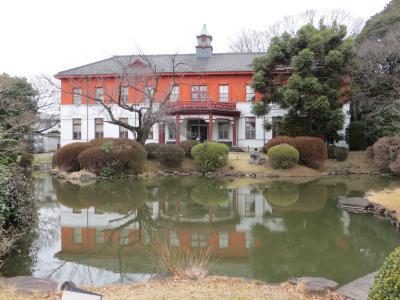 時代劇ファンにはおなじみ 小石川養生所跡の 小石川植物園で梅見