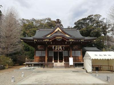 龍ヶ崎で神社おまけの河津桜