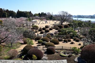 関東八州・季節の花の旅【弥生/梅】Part.1~3,000本の梅花が咲き乱れる名所「偕楽園」~