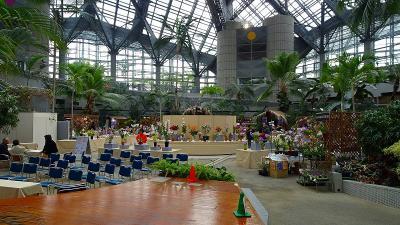 花博記念公園鶴見緑地(07) 咲くやこの花館 その7。