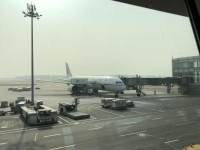 2019年 SFC修行#1 中国国際航空でシンガポールへ