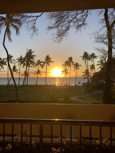 【ハワイ島2019】ハワイアン航空で行くハワイ島満喫旅 2