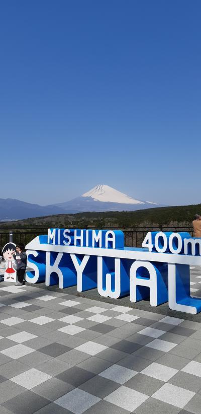 富士山を見に行こう①初三島スカイウォークへ