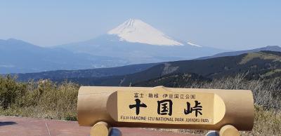 富士山を見に行こう③十国が見渡せる十国峠、そして芦ノ湖へ