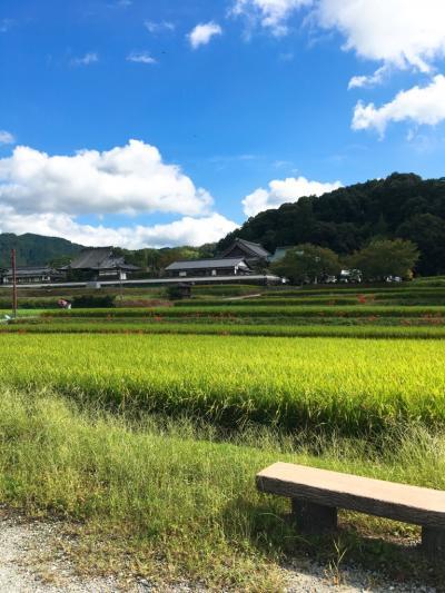 古墳壁画を見るために奈良2泊3日②