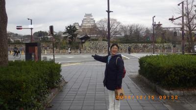 姫路城および次男の運転する電車に乗車