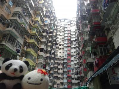 vol.16-2/3 香港 夜景と超密集マンション、SKY100に香港大学、昴坪360、そしてパンダを求めて