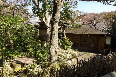 北鎌倉山中稲荷前の茶室あるお宅