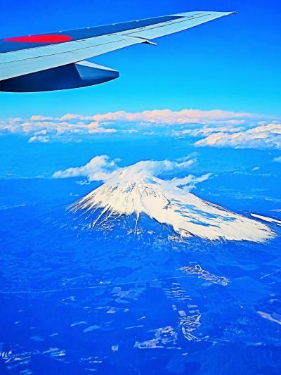 富士山/南側上空 JAL915便 沖縄/那覇行 ☆感動!冠雪の霊峰を見おろし