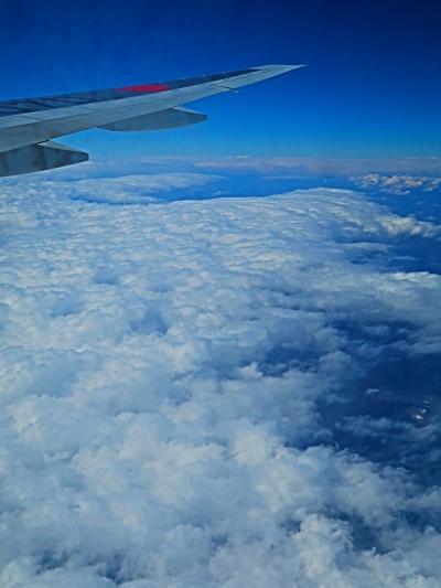 潮岬-室戸岬-宮崎沖/上空 JAL915便 沖縄/那覇行 ☆雲海の上を飛行・昼食はのり弁