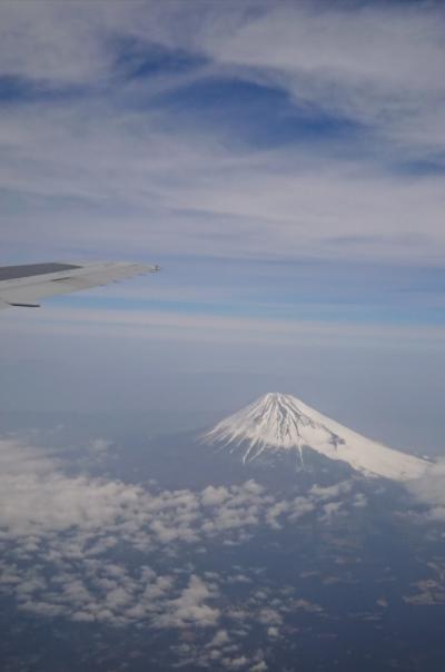 空のお散歩~どこかにマイルで日帰り徳島へ~