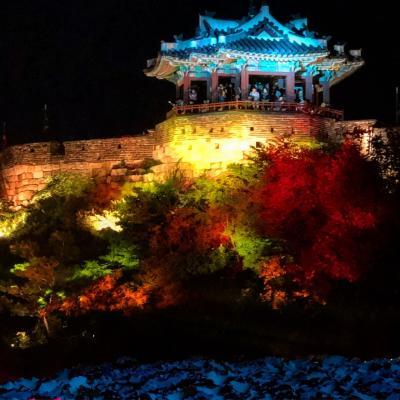 水原華城  ライトアップ
