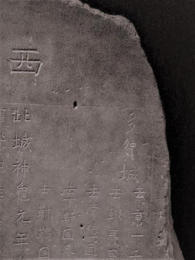 多賀城跡/廃寺跡(2) - 多賀城史跡めぐり(東北歴史博物館) -