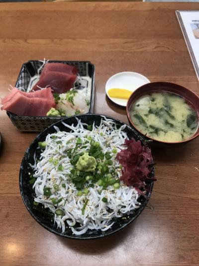 【神奈川県】京急でみさきまぐろきっぷの旅