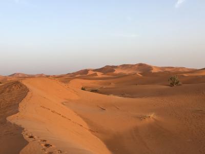 ポチっと不思議モロッコ旅 可愛い雑貨  サハラ砂漠でトリック写真 青の街シャウエン  路地だらけだった迷宮フェズ マラケシュ