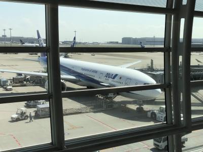 ANA NH110  搭乗記 羽田 - ニューヨーク 2019/04 人生初めてのアメリカ 出国編