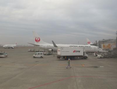 乗り物ばっかり四国旅(6)【終】松山空港から羽田空港へはJALクラスJで