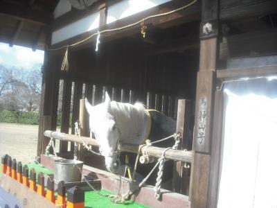 平成31年3月24日 神仏霊場 賀茂別雷神社行