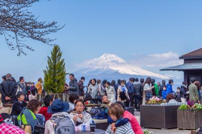 晴天の日は富士山を眺めに~伊豆の国パノラマパーク~