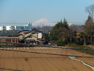 3月24日、素晴らしい富士山が見られました