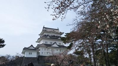 2019春の青春18きっぷ⑤ 小田原城