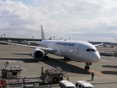 主婦のひとり旅 ヘルシンキ&ストックホルム JAL特典航空券ビジネスクラスの旅1日目