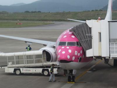 石垣島2019春(17)石垣空港から羽田空港へのフライトはさくらジンベエ で