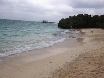 覚書の沖縄~天候がよくなかったので青い海とはいかなかったけれども~