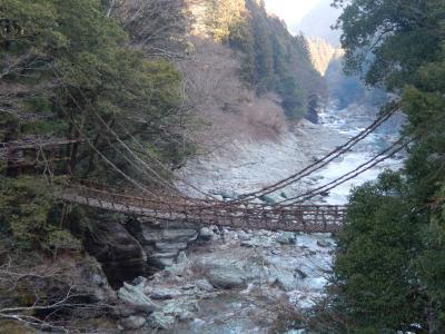 阪急ツアーで行く四国の旅5 祖谷渓のかずら橋