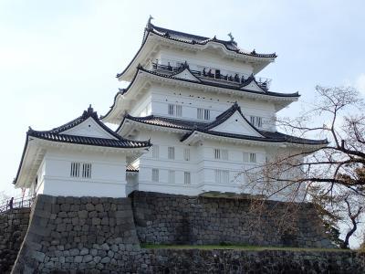 小田原城ちょこっと旅 日本100名城巡りの巻