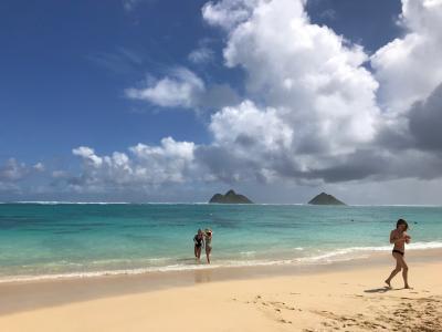 てくてくハワイその7 ラニカイとヌアヌパリ
