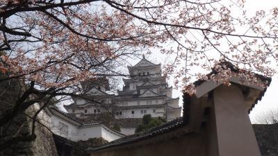 姫路城 西の丸経由で天守閣へ そして好古園