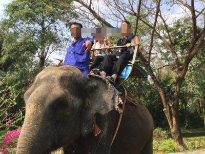 タイ専科 63 サンプラーン動物園  Samphran Elephant Ground & Zoo