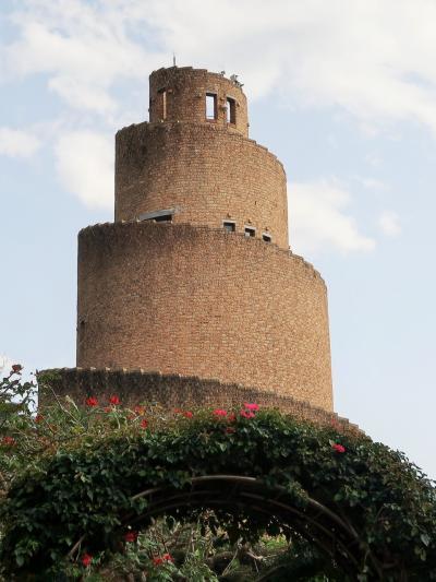 沖縄19 海洋博公園e 熱帯ドリームセンター  遠見台36m高さで ☆海岸と植物園が一望に