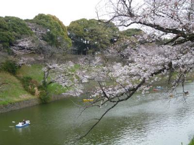 千鳥ヶ淵・靖国神社の桜 2019/03/28