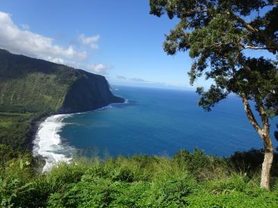 ハワイ旅 3日目 キラウェア火山とマウナケア山麓星空観測