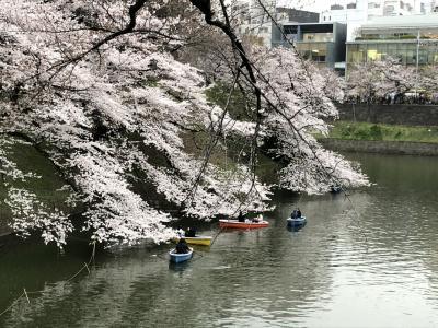 桜を見ながら千鳥ヶ淵~靖国神社を歩いた