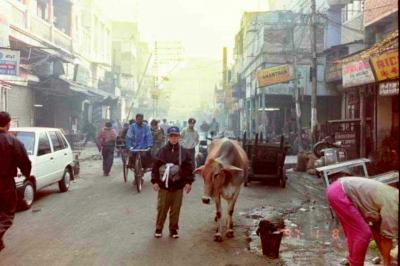 小学生  坊主 と  ~   歩いた  懐かしい    インド  ........  1997