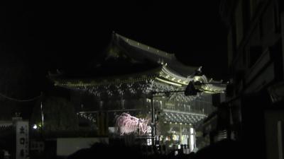 【成田→羽田】2019年成田山新勝寺初詣と羽田空港で初日の出(その1)