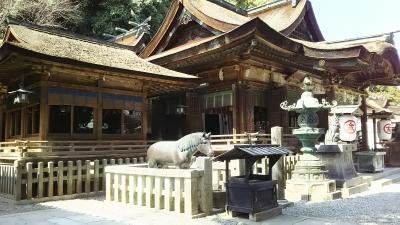 高松・松山旅行(1)金毘羅宮編