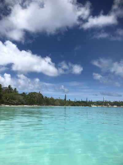 天国にいちばん近い島 🐳🐬