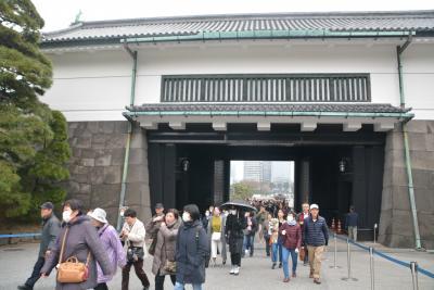 東京散歩 本日より一般公開皇居乾通り 桜を見に