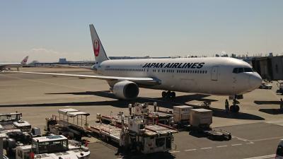 いろいろ食べたくなったので、JALで行く長崎旅行
