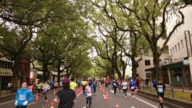 青島太平洋マラソン&宮崎 3神宮巡り