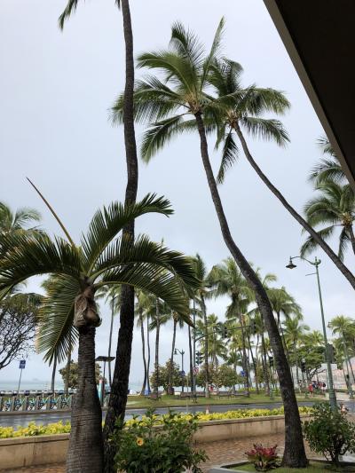 またまたハワイへ!母と娘(5歳)ひたすらビーチで遊ぶのんびりハワイ④