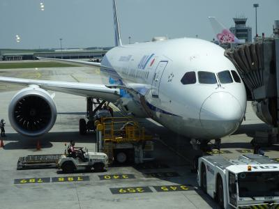 ANA特典航空券で行く HND-BKK-SIG-KUL-HND KUL→HND 帰国編